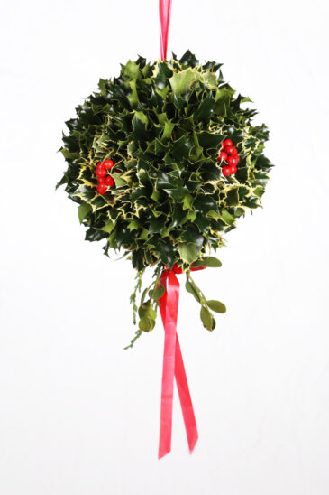 Holly Kissing Ball with Variegated Holly